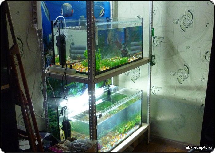 Стеллаж своими руками для аквариума 62